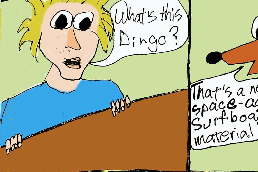 dingo-cardboard